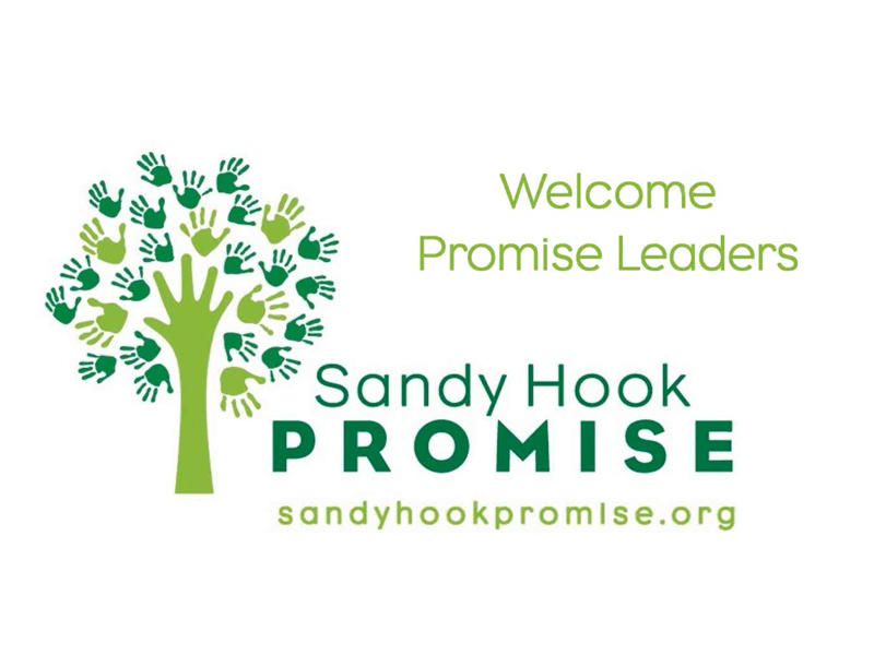 Promise Leaders Training Call